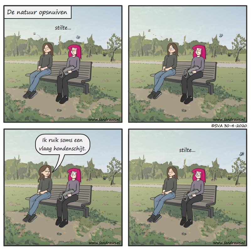 Vlaag schijt - strip