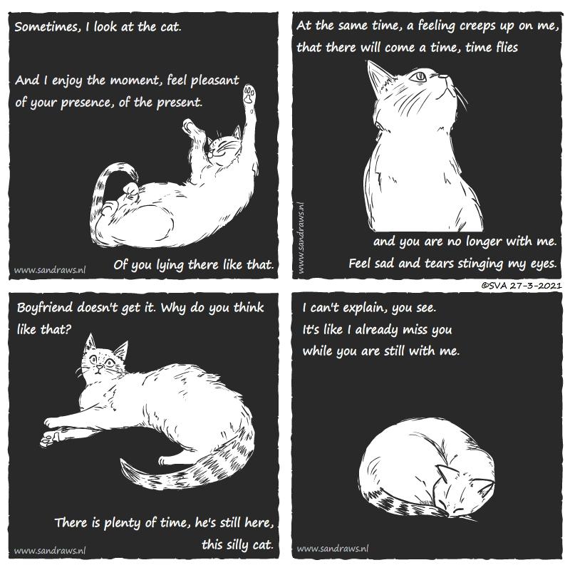 this cat - comic